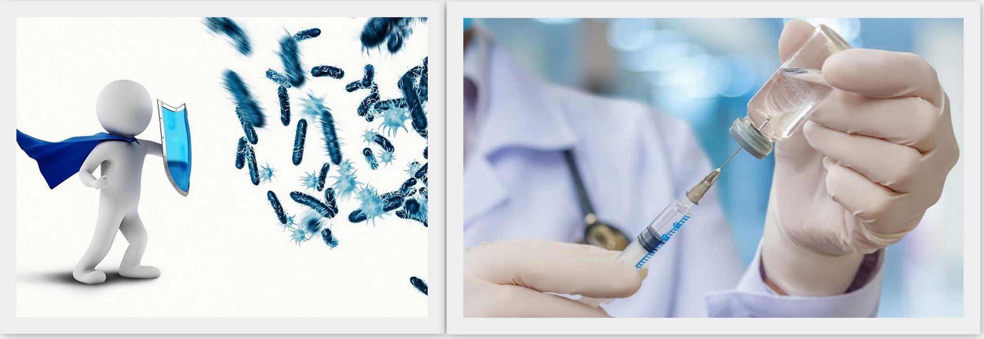 Виды и нормы прививок в 2021 году